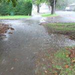 Envivo_civil_engineering_Auckland_flood