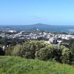 Envivo_Cross_lease_Auckland_Freehold