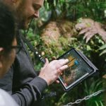 Kauri forest 3D laser scanning